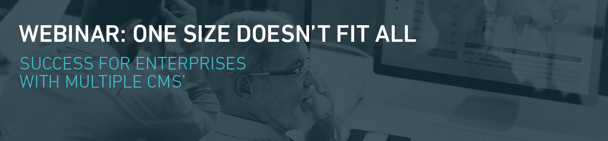 One Size Doesn't Fit All: Success for Enterprises with Multiple CMS'